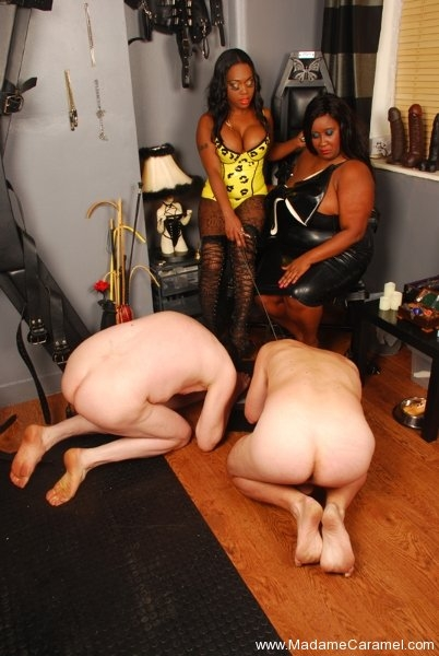 Excellent and ebony femdom mpg theme
